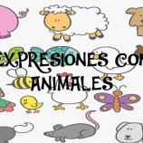 SENTIRSE COMO PEZ EN EL AGUA: EXPRESIONES CON ANIMALES
