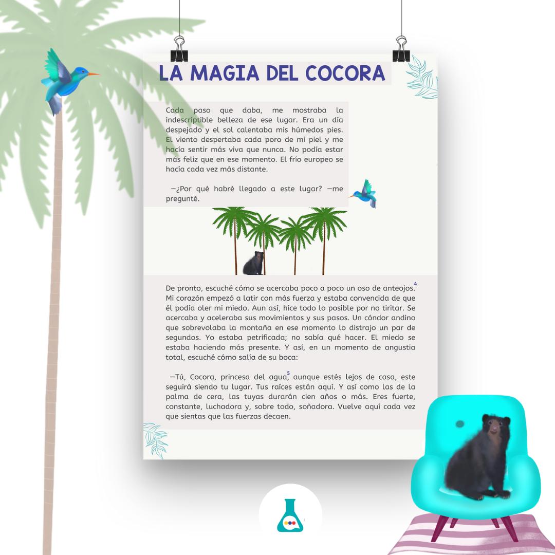 MAGIA COCORA_2