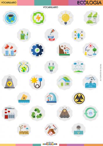 Copy of Infografía-Ecología-sin nombres